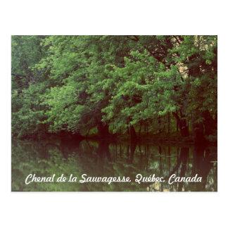 Chenal de la Sauvagesse, Québec, Canada Postcard
