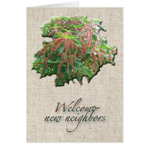 Chenille Plant Welcome Neighbor Card