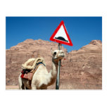 chepa Jordania del camello Postal