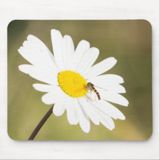 Chequered Hoverfly Mouse Pad