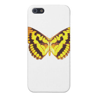 Chequered Skipper Butterfly iPhone 5 Covers