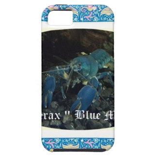 Cherax blue moon.jpg iPhone SE/5/5s case