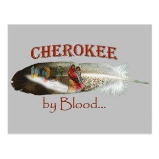 Cherokee by Blood Postcard