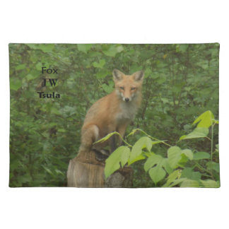 Cherokee Fox Beautiful Photo Cotton Placemat Cloth Placemat