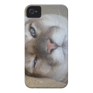 Cherokee iPhone 4 Cases