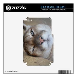 Cherokee iPod Touch 4G Calcomanías