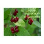 Cherokee Prayer Postcard