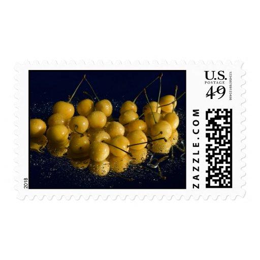 cherries_5 amarillo