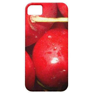 Cherries Art Photo iPhone SE/5/5s Case