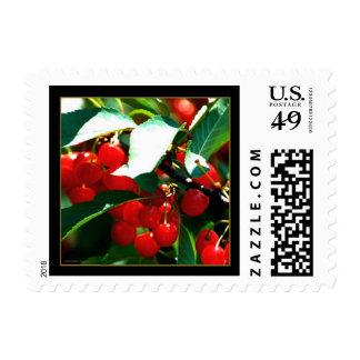 Cherries Postage - Small