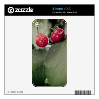 Cherries Skins For iPhone 4S