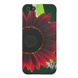 Cherry and Chocolate Sunflower iPhone 5 Case