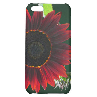 Cherry and Chocolate Sunflower Case For iPhone 5C