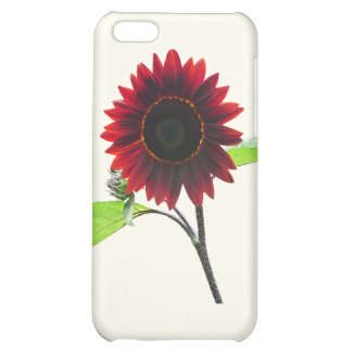 Cherry and Chocolate Sunflower iPhone 5C Cases