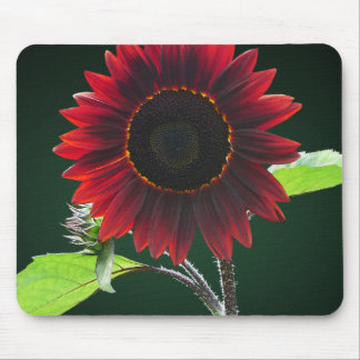 Cherry and Chocolate Sunflower Mouse Pads