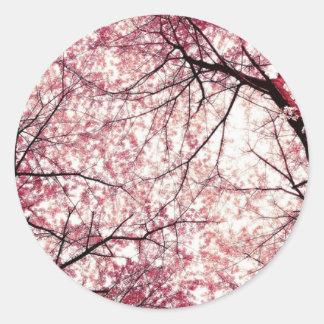 cherry blossom 2 classic round sticker