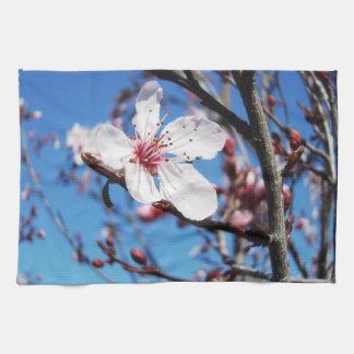 Cherry Blossom 2 Kitchen Towel