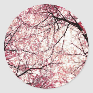cherry blossom 2 sticker