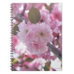 Cherry Blossom 4 Notebook