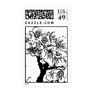 Cherry Blossom #7 Postage Stamp