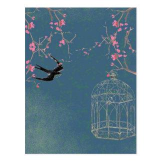 Cherry blossom and birdcage postcard, unique postcard