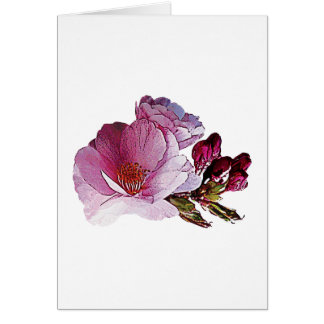 Cherry Blossom and Bud Card