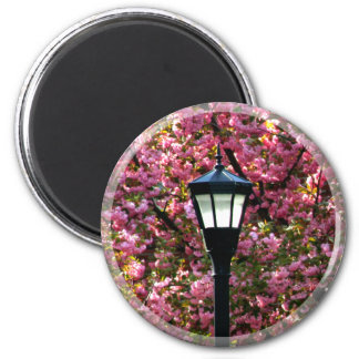 Cherry Blossom And Lamp Magnet Favor