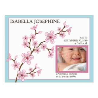 Cherry Blossom Baby Girl Birth Announcement blue Postcards