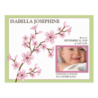 Cherry Blossom Baby Girl Birth Announcement green Post Card