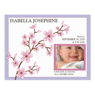 Cherry Blossom Baby Girl Birth Announcement lilac Post Card