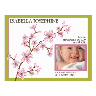 Cherry Blossom Baby Girl Birth Announcement lime Post Card