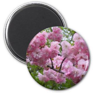 Cherry blossom branch 2 inch round magnet