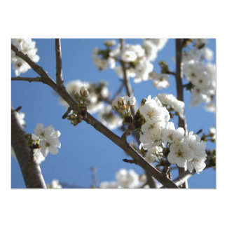 """Cherry Blossom Branches Against Blue Sky 5.5"""" X 7.5"""" Invitation Card"""