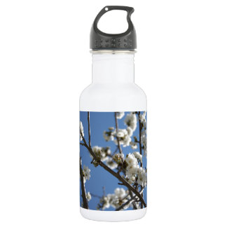Cherry Blossom Branches Against Blue Sky Stainless Steel Water Bottle