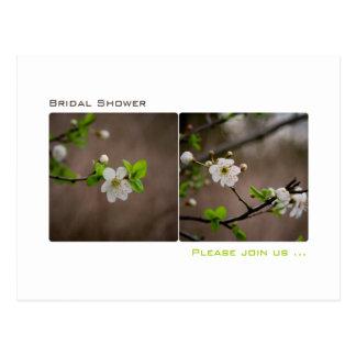 Cherry Blossom • Bridal Shower Invitation Postcard