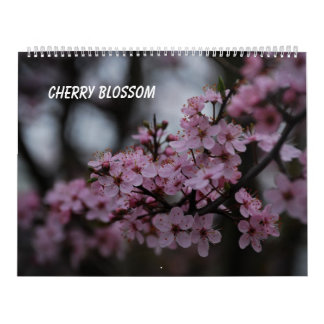 Cherry Blossom Calendar