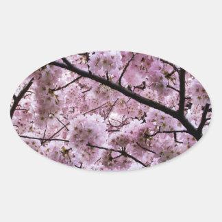 Cherry Blossom Canopy Oval Sticker