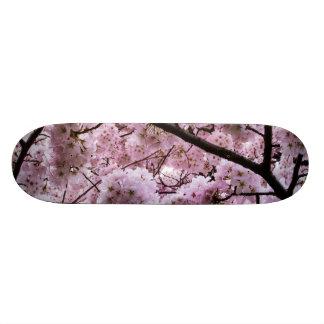 Cherry Blossom Canopy Skateboard