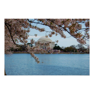 Cherry Blossom Festival & Jefferson Memorial Poster