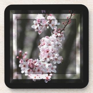 Cherry Blossom Floral Beverage Coaster