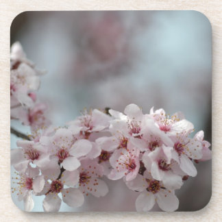 Cherry Blossom Floral Drink Coaster