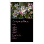 Cherry Blossom Flowers Business Card