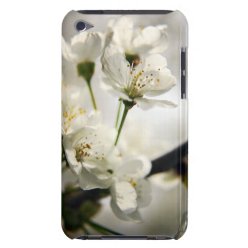 Cherry Blossom Flowers iPod Case-Mate Case