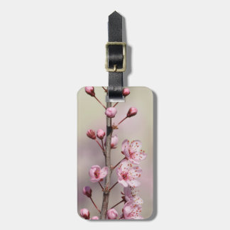 Cherry Blossom Flowers Tags For Luggage