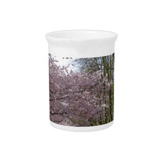 Cherry Blossom Garden Drink Pitchers