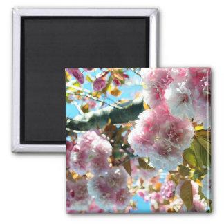 Cherry Blossom Impression Magnet