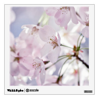 Cherry Blossom in Light Pink and Blue Wall Sticker