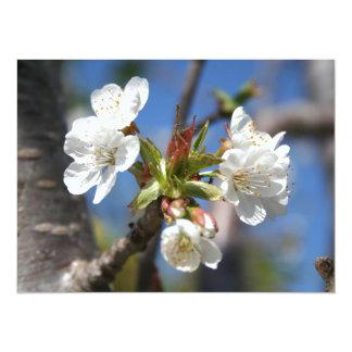 "Cherry Blossom In Spring Sunlight 5.5"" X 7.5"" Invitation Card"