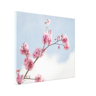 Cherry Blossom in the Sky Canvas Print