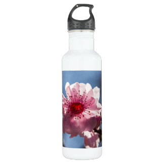Cherry Blossom in the Sunshine Water Bottle
